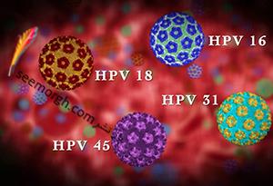 ویروس hpv چیست؟ + راههای انتقال ویروس hpv