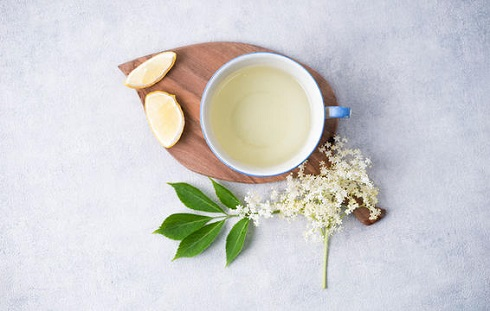 چای آقطی Elderflower
