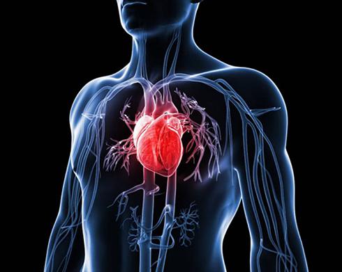 آلودگي هوا و ترافيک دو عامل مهم در افزايش ميزان سکته قلبي