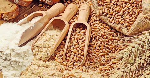 فواید سبوس گندم برای سلامت بدن