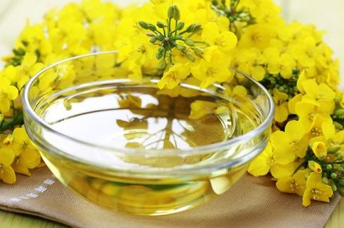 کاهش چربی شکم با روغن کانولا + فواید سلامتی برای بدن