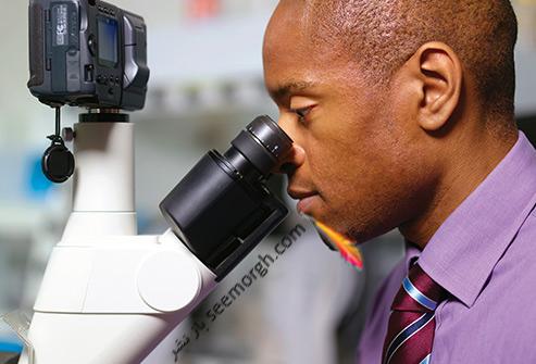 آزمايش ادرار چه بيماري هايي را مشخص مي کند؟