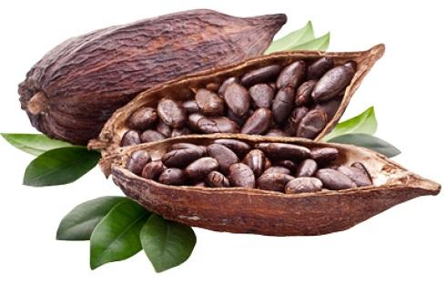 زیبایی و جوانسازی پوست با کاکائو