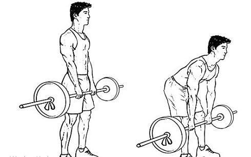 کاهش وزن سریع با 5 حرکت قدرتی