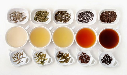چای سبز چای سیاه و چای اولانگ چه تفاوت هایی دارند؟