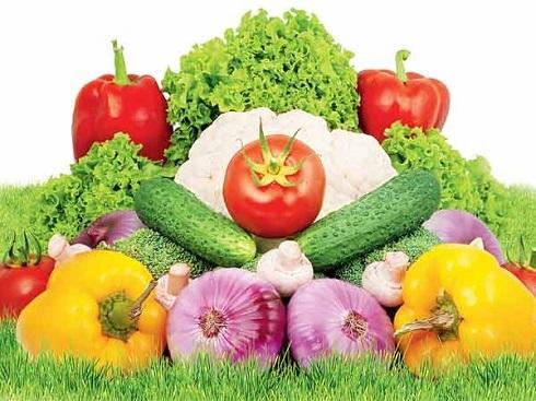 سبزیجات مناسب روزهای گرم