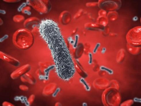روش نابودي باکتري ها بدون آنتي بيوتيک کشف شد