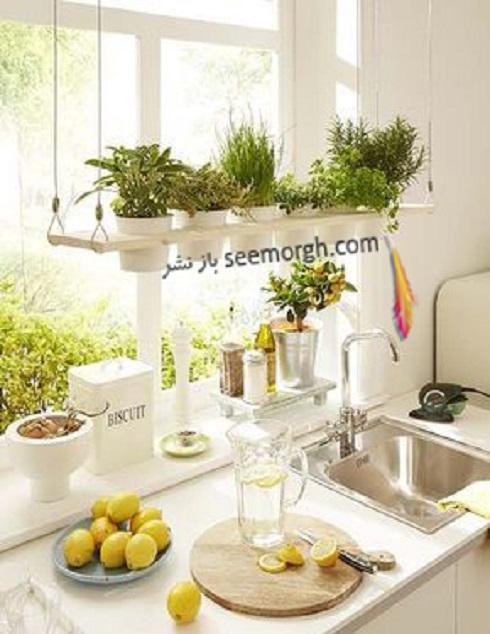 باغچه عمودی برای آپارتمان کوچک - عکس شماره 3