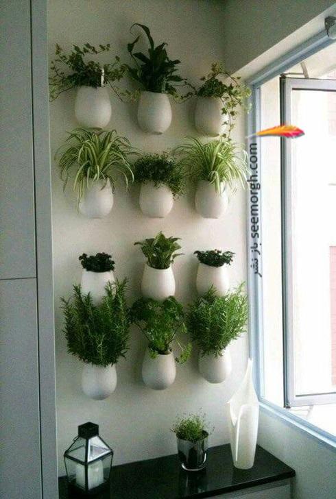 باغچه عمودی برای آپارتمان کوچک - عکس شماره 12