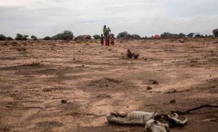 گرسنگی جان 110 سومالیایی را گرفت
