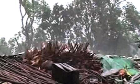 توفان ماداگاسکار با 38 کشته و 53 هزار آواره