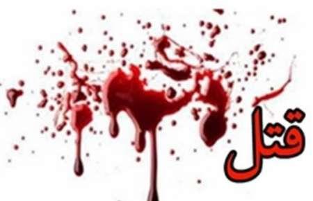 انتقام جویی انگیزه قتل برادر زاده 3 ساله / قاتل دستگیر شد