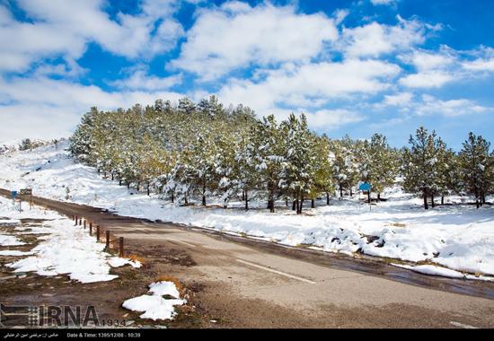 تصاویری زیبا از طبیعت زمستانی نیشابور