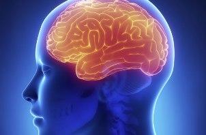10 واقعیت عجیب درباره مغز انسان