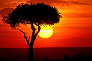 اولین عکسی که انسان 171 سال پیش از خورشید گرفت!