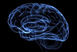 در دوره سالمندی مراقب این 4 بیماری عصبی باشید