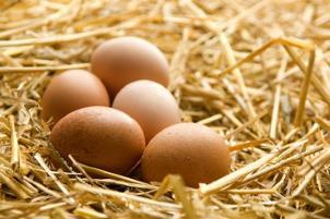 هرگز تخم مرغ را شسته شده داخل یخچال نگذارید