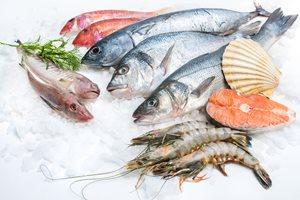ماهی منجمد بخریم یا نه