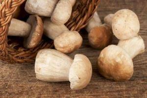 نکاتی مهم برای خرید و نگهداری قارچ