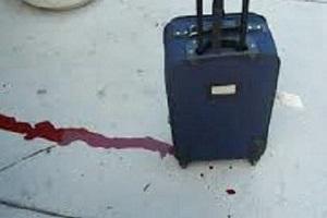 جنازه را در چمدان و چمدان را در سطل زباله انداختم، نمیدانم چرا جنازه نبود؟