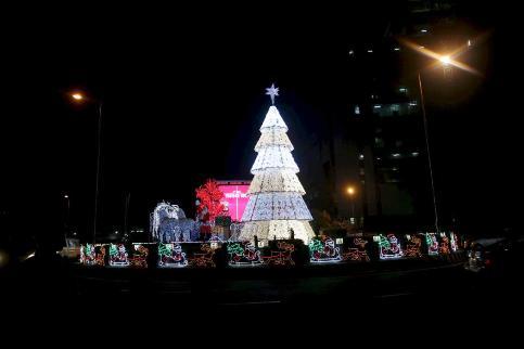 درخت کریسمس در جزیره ویکتوریا در لاگوس نیجریه