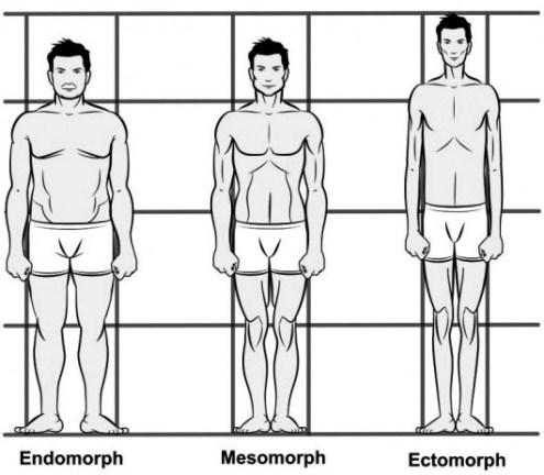 تیپ بدنی شما کدامیک از 3 تیپ بدنی زیر است