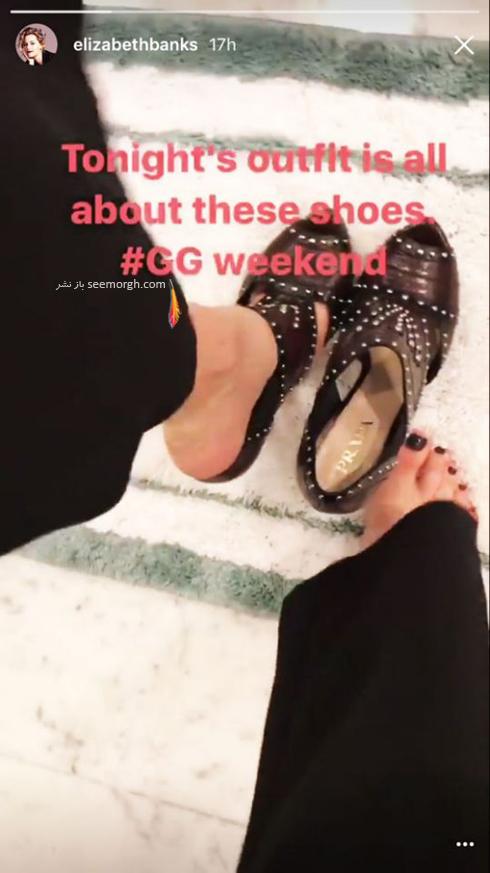 کفش های الیزابت بنک Elizabeth Banks برای مراسم گلدن گلوب 2017 Golden Globe