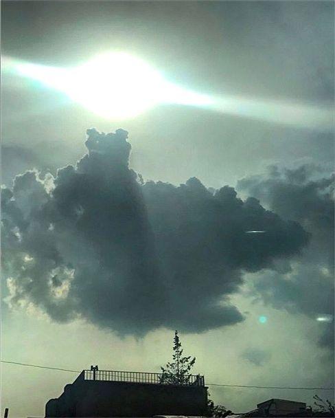 عکس منتشر شده توسط الناز شاکردوست