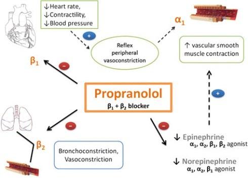 پروپرانولول Propranolol