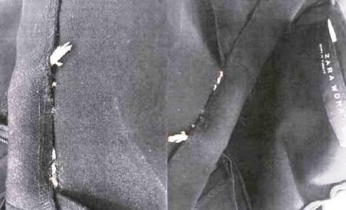 موش در لباس برند زارا