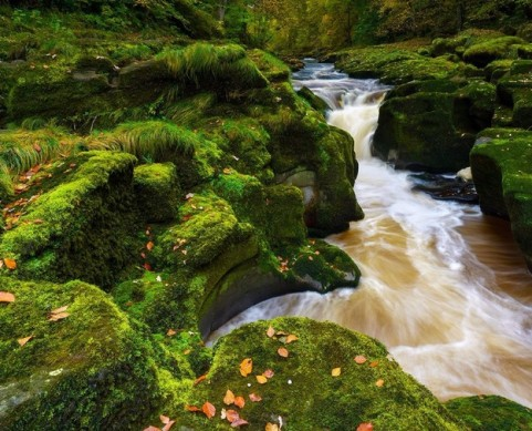 رودخانه مرموز در انگلستان 1