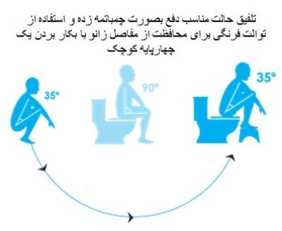 squatty-evolution.jpg