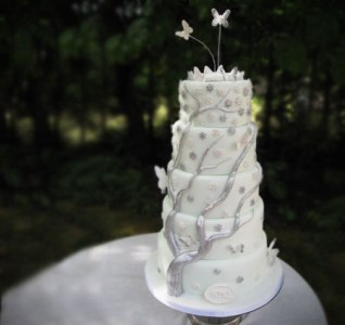[تصویر: cake01.jpg]