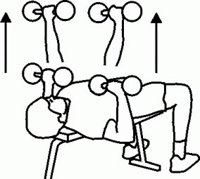 تمرین پرس سینه ( Chest press Exercise ) برای سفت و کوچک کردن سینه