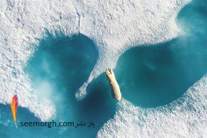 این عکس های بی نظیر کار استادان عکاسان هوایی هستند (قسمت2)