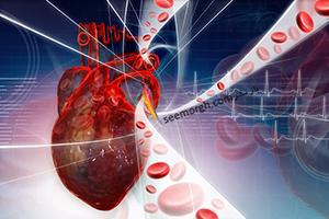 مهم ترین ویتامین ها برای بهبود گردش خون