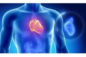 قبل از حمله قلبی بدن چه هشدارهایی به شما می دهد؟