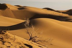 پارک ملی کویر کجاست؟ + عکس