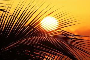 امیدیه به عنوان گرمترین شهر جهان معرفی شد