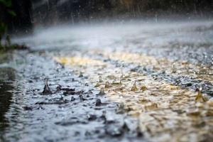 احتمال بارش باران در برخی نقاط کشور