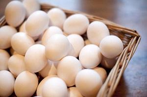 قیمت مصوب تخممرغ، شانهای ۲۶هزار تومان
