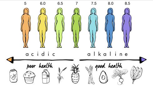 1. فواید آب آلوئه ورا: قلیایی کردن بدن Alkalinity
