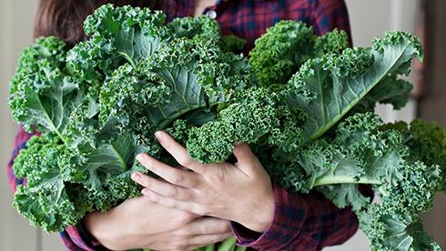 منابع کلسیم در مواد غذایی ، این گیاهان بیشتر از شیر کلسیم دارند