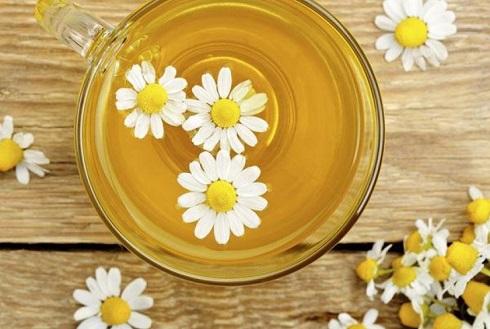 چای بابونه یا زنجبیل