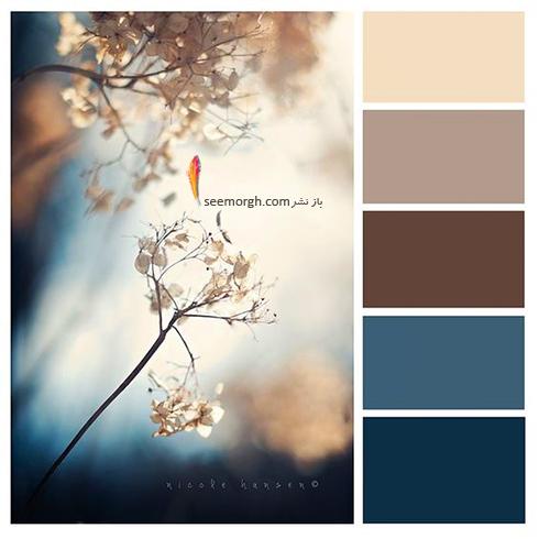 بهترین رنگ ها برای ترکیب با رنگ سورمه ای در دکوراسیون داخلی - ترکیب رنگی شماره 3