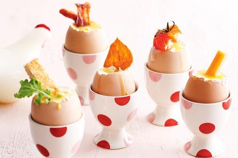 2.تغذیه ماردان شیرده با تخم مرغ