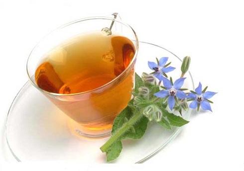 برای کاهش استرس این دمنوش های گیاهی را بخورید