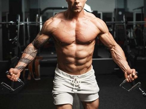افزایش پروتئین، توده عضلانی را افزایش می دهد