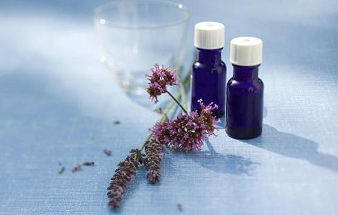 میگرن دارید؟ برای درمان سردردتان از اسطوخودوس استفاده کنید