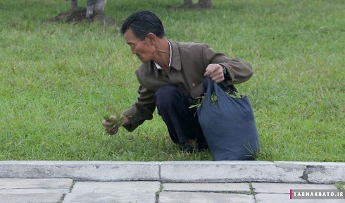 Pictures of North Korea that the leader of this country hides from you-5.jpg